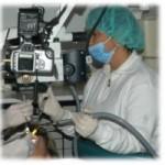 il ruolo dell'assistente in endodonzia